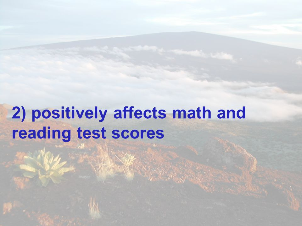 2) positively affects math and reading test scores