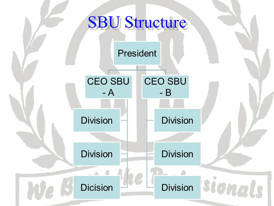 SBU Structure President CEO SBU - A Division Dicision CEO SBU - B