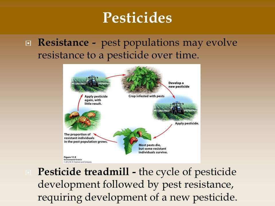 Pesticides Resistance - pest populations may evolve resistance to a pesticide over time.
