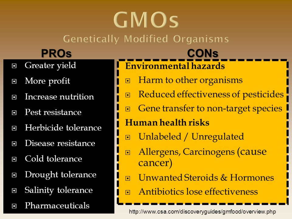 GMOs Genetically Modified Organisms