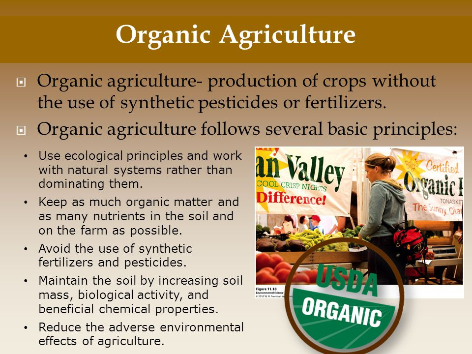 Organic Agriculture Organic agriculture- production of crops without the use of synthetic pesticides or fertilizers.