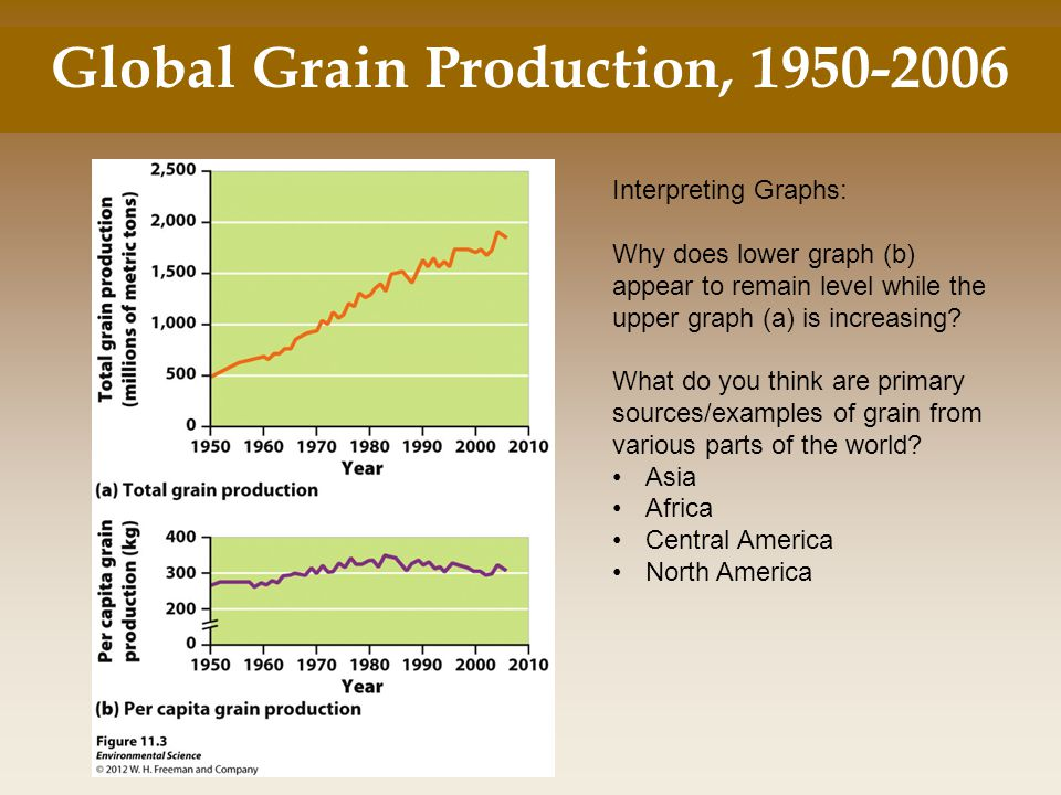 Global Grain Production, 1950-2006