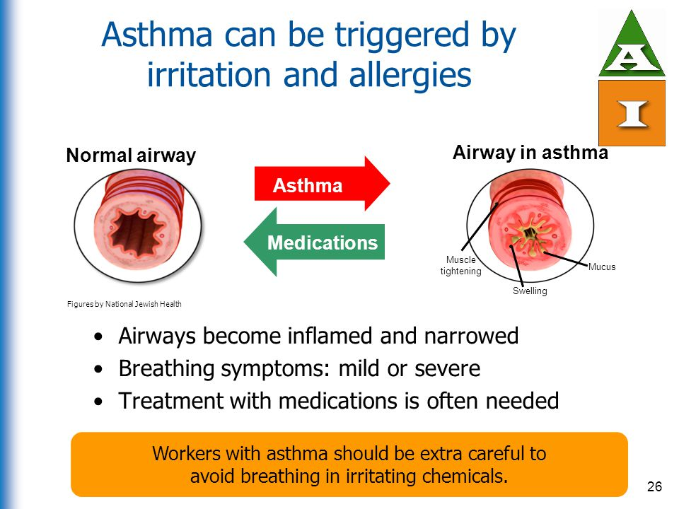 Asthma can be triggered by irritation and allergies