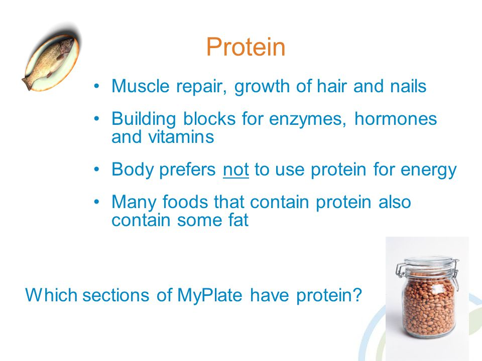 Protein Muscle repair, growth of hair and nails