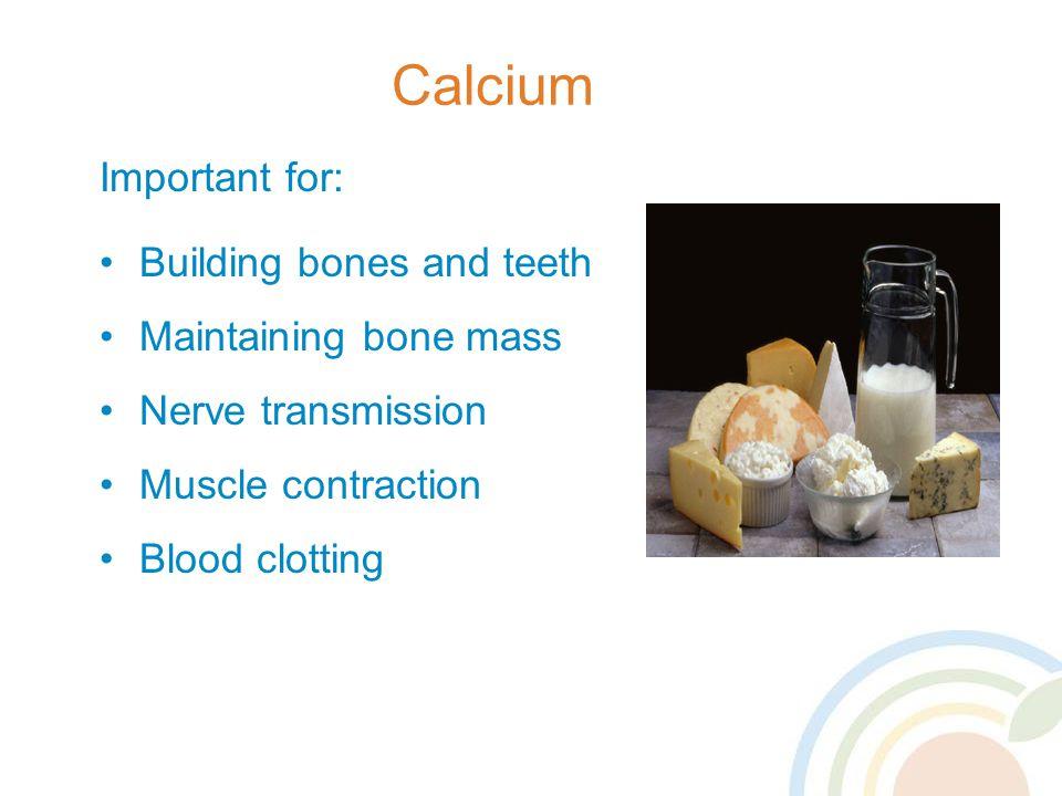 Calcium Important for: Building bones and teeth Maintaining bone mass