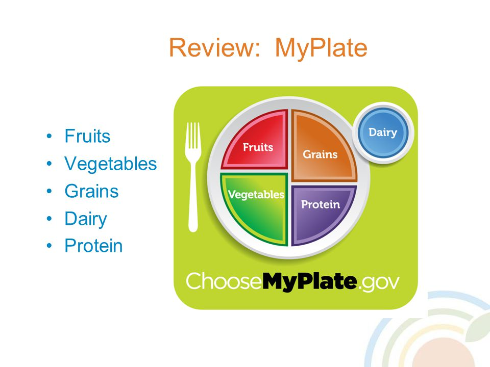Review: MyPlate Fruits Vegetables Grains Dairy Protein