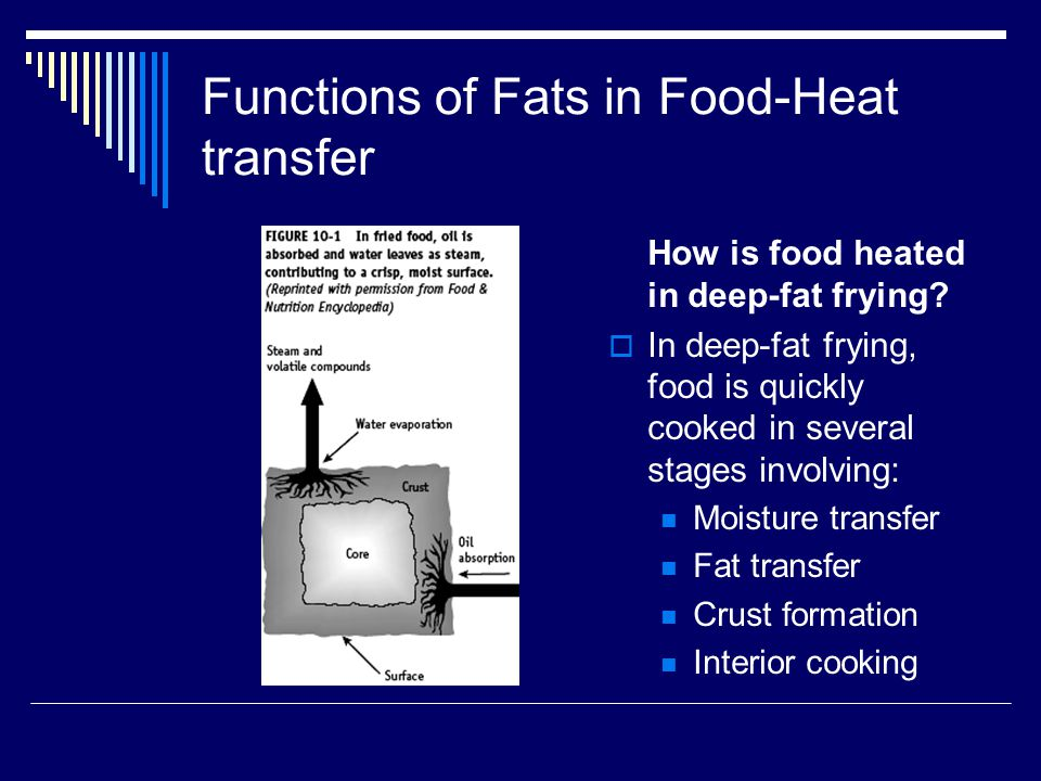 Functions of Fats in Food-Heat transfer