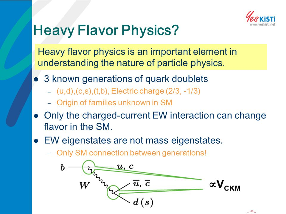Heavy Flavor Physics Heavy flavor physics is an important element in understanding the nature of particle physics.