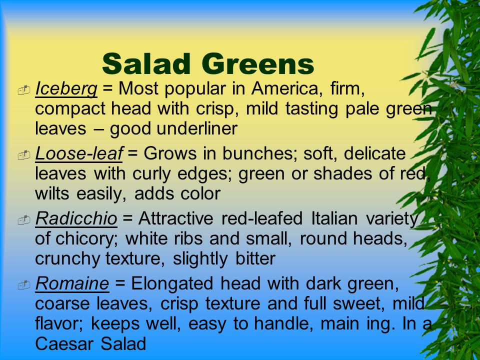 Salad Greens Iceberg = Most popular in America, firm, compact head with crisp, mild tasting pale green leaves – good underliner.