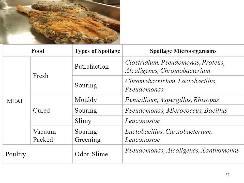 Spoilage Microorganisms