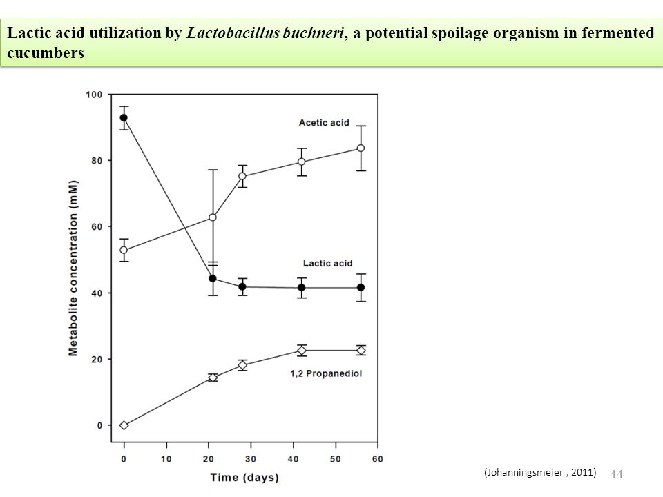 Lactic acid utilization by Lactobacillus buchneri, a potential spoilage organism in fermented cucumbers