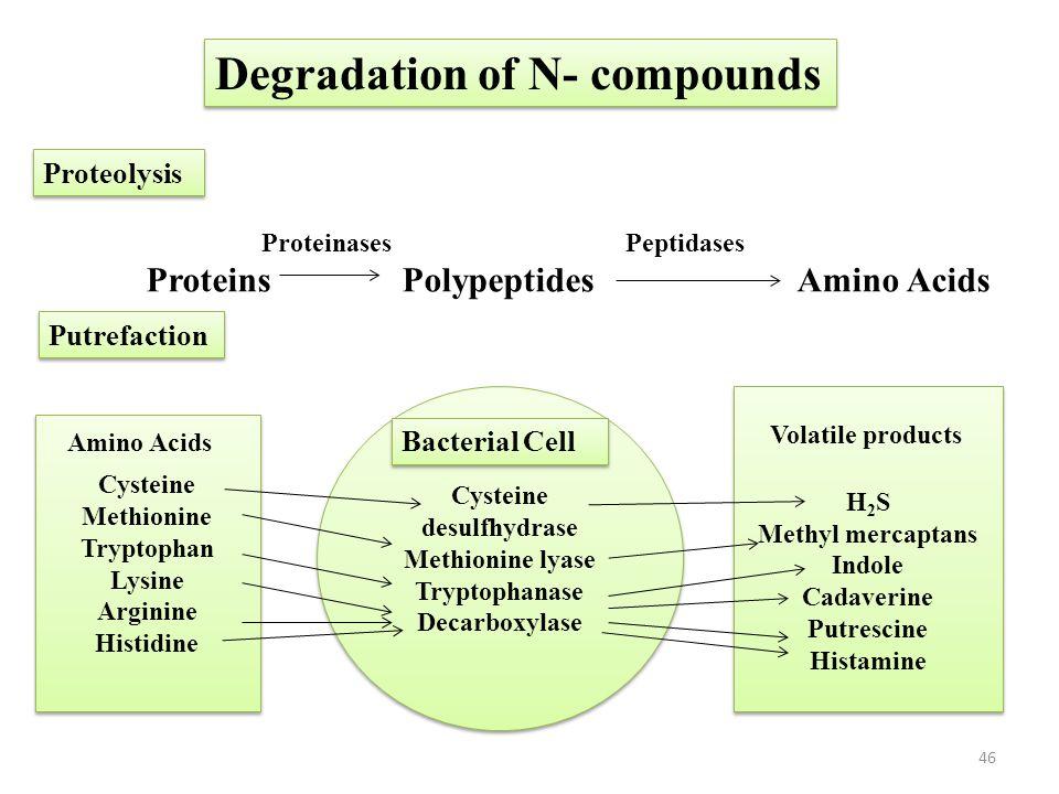 Cysteine desulfhydrase