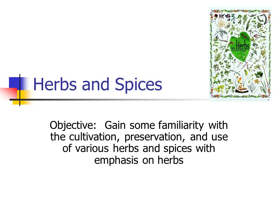 Herbs and Spices Objective: Gain some familiarity with the cultivation, preservation, and use of various herbs and spices with emphasis on herbs.