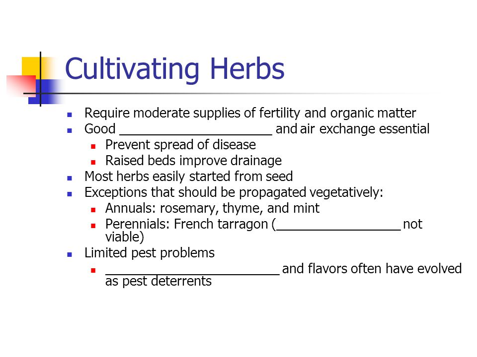 Cultivating Herbs Require moderate supplies of fertility and organic matter. Good _____________________ and air exchange essential.