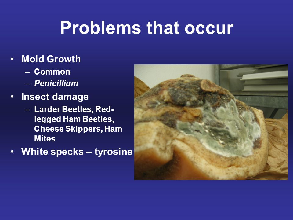 Problems that occur Mold Growth Insect damage White specks – tyrosine