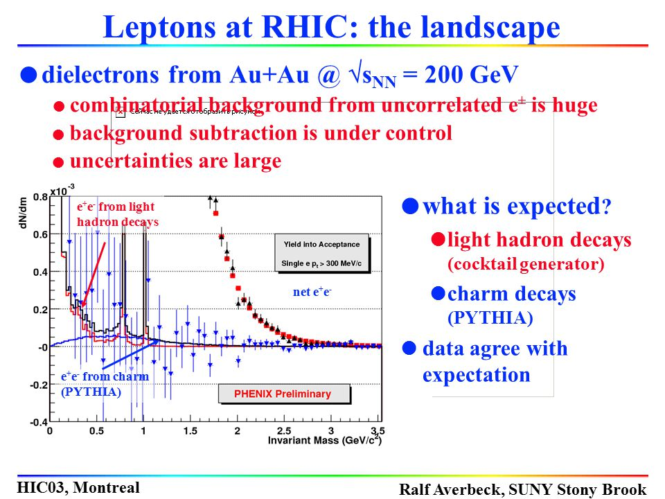 Leptons at RHIC: the landscape