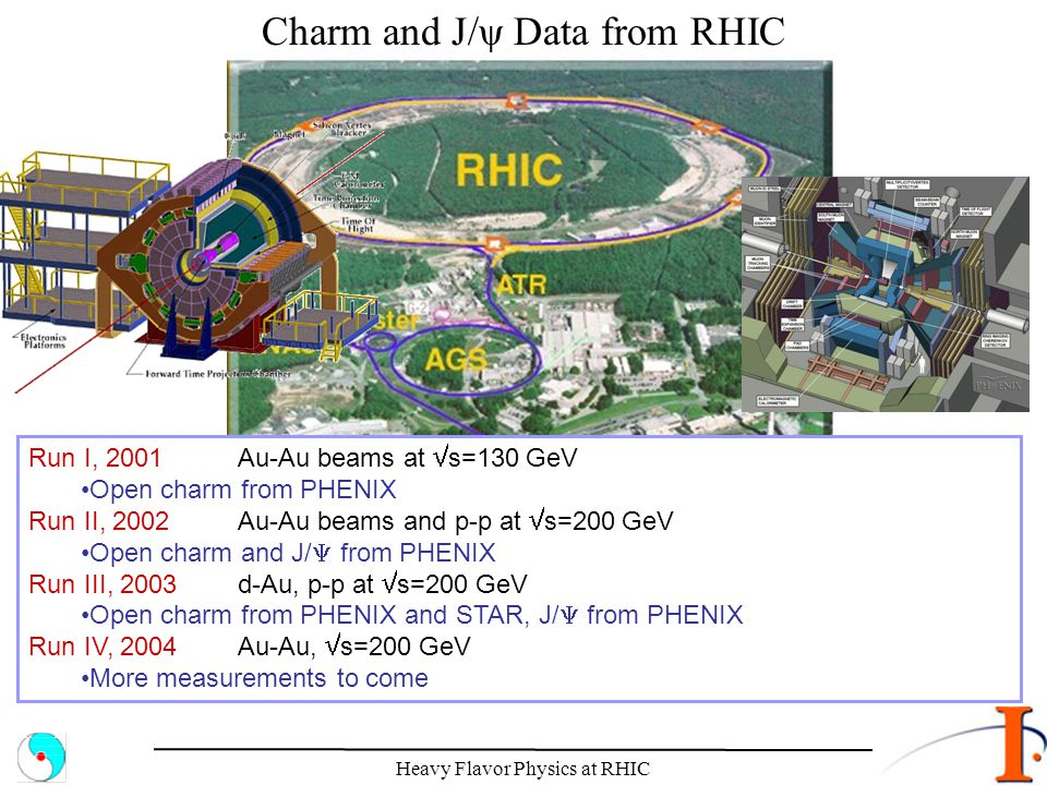 Charm and J/ψ Data from RHIC
