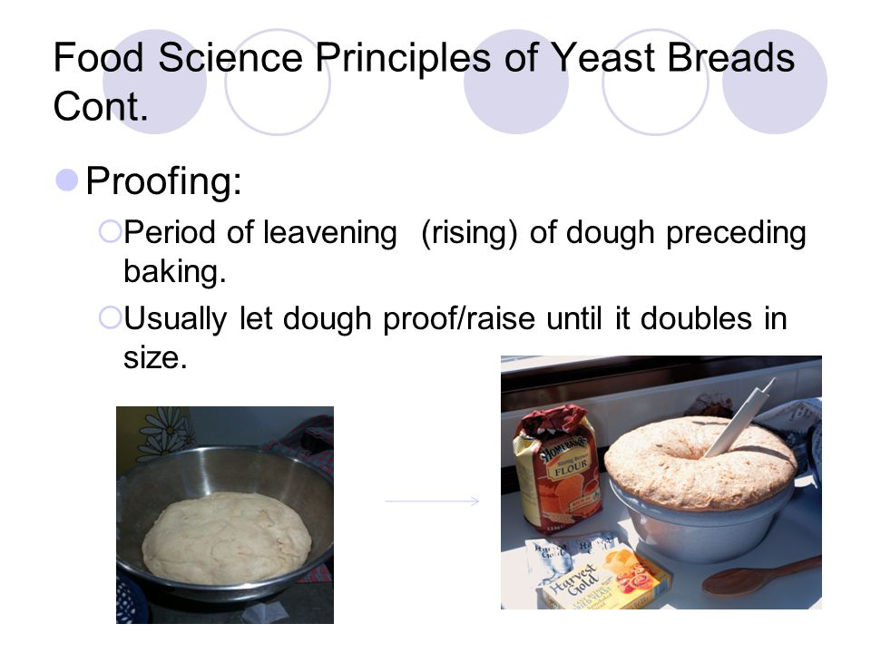 Food Science Principles of Yeast Breads Cont.