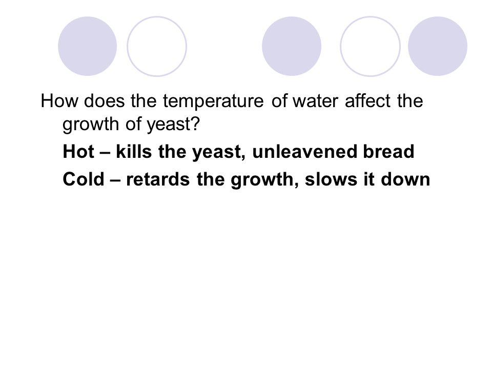 How does the temperature of water affect the growth of yeast