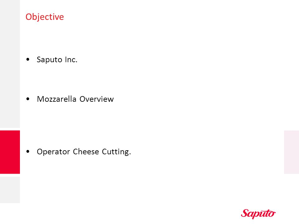 Objective Saputo Inc. Mozzarella Overview Operator Cheese Cutting.