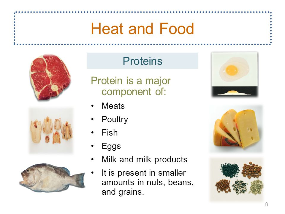 Heat and Food Proteins Protein is a major component of: Meats Poultry