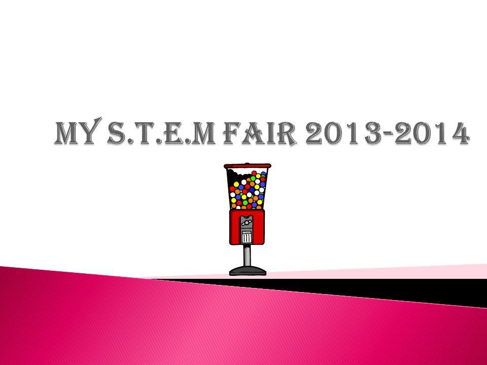 My S.T.E.M Fair 2013-2014