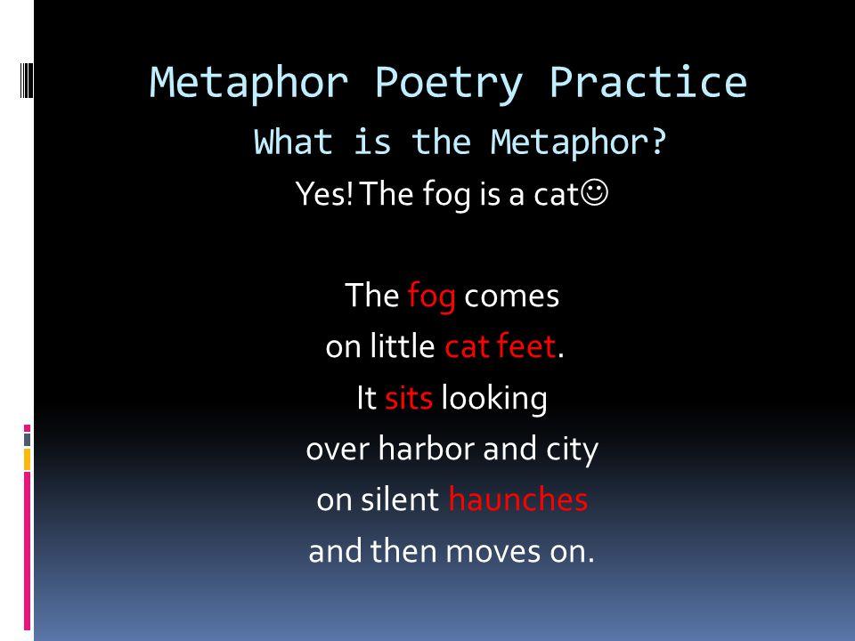 Metaphor Poetry Practice What is the Metaphor