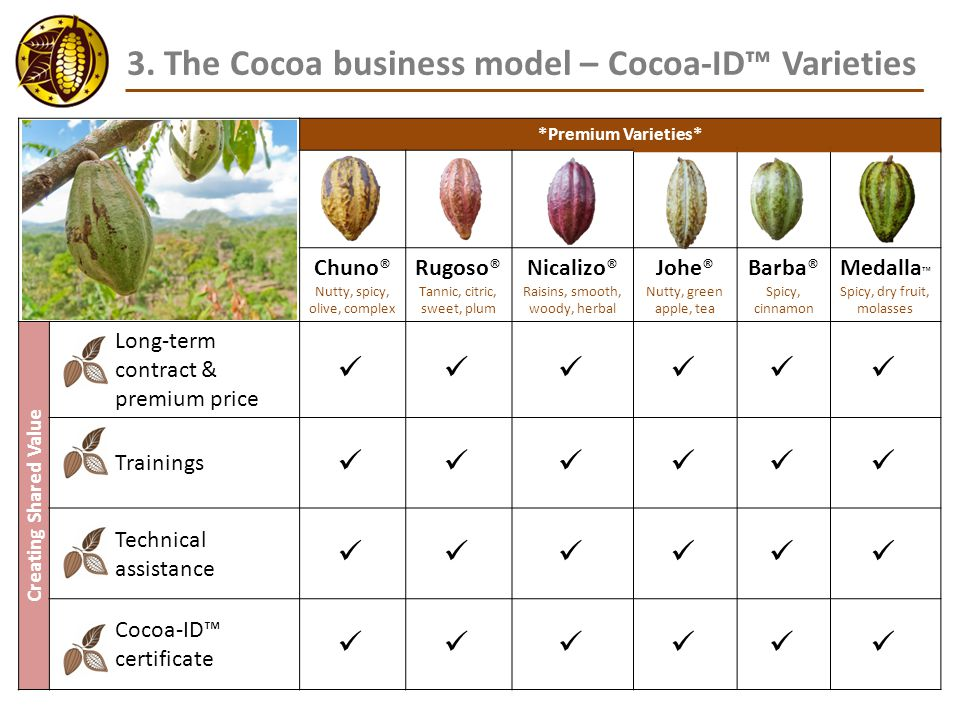 3. The Cocoa business model – Cocoa-ID™ Varieties