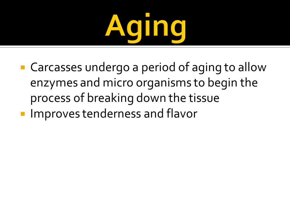 Aging Carcasses undergo a period of aging to allow enzymes and micro organisms to begin the process of breaking down the tissue.
