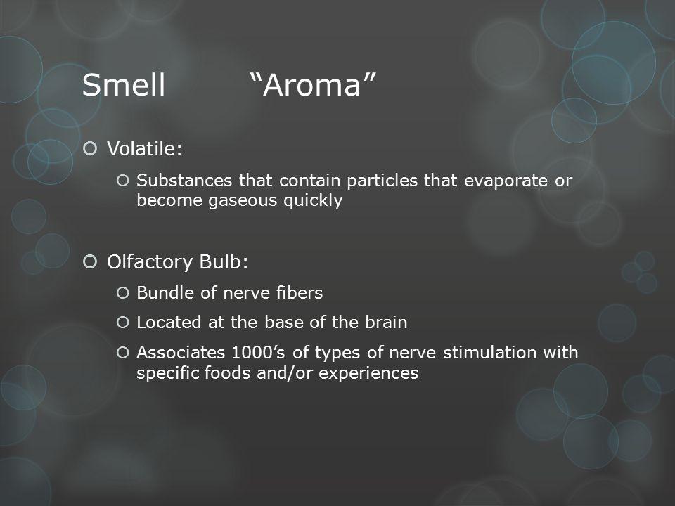 Smell Aroma Volatile: Olfactory Bulb: