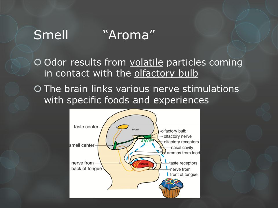 Smell Aroma Odor results from volatile particles coming in contact with the olfactory bulb.