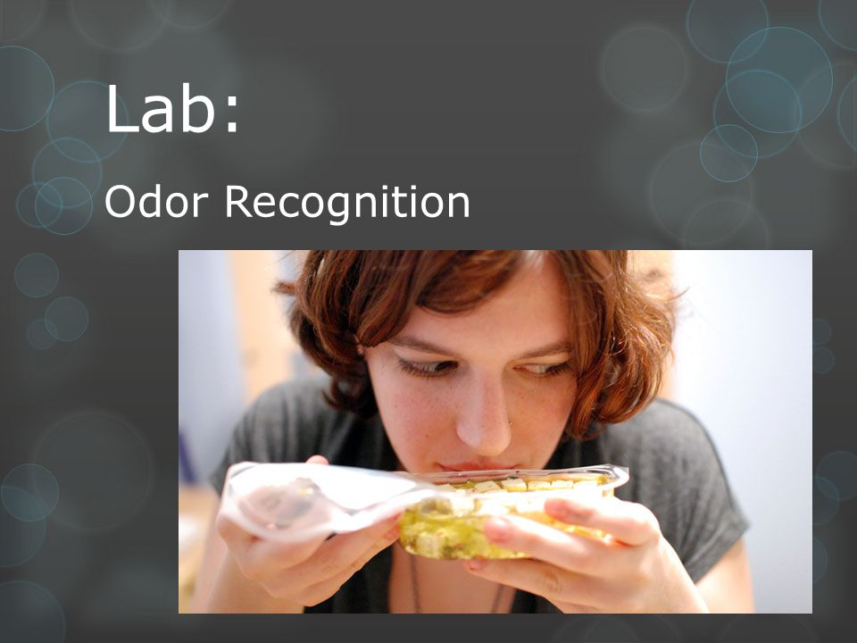 Lab: Odor Recognition