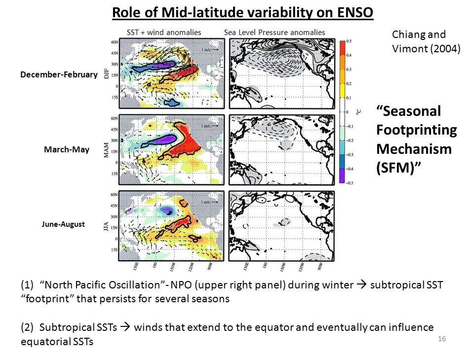 Role of Mid-latitude variability on ENSO