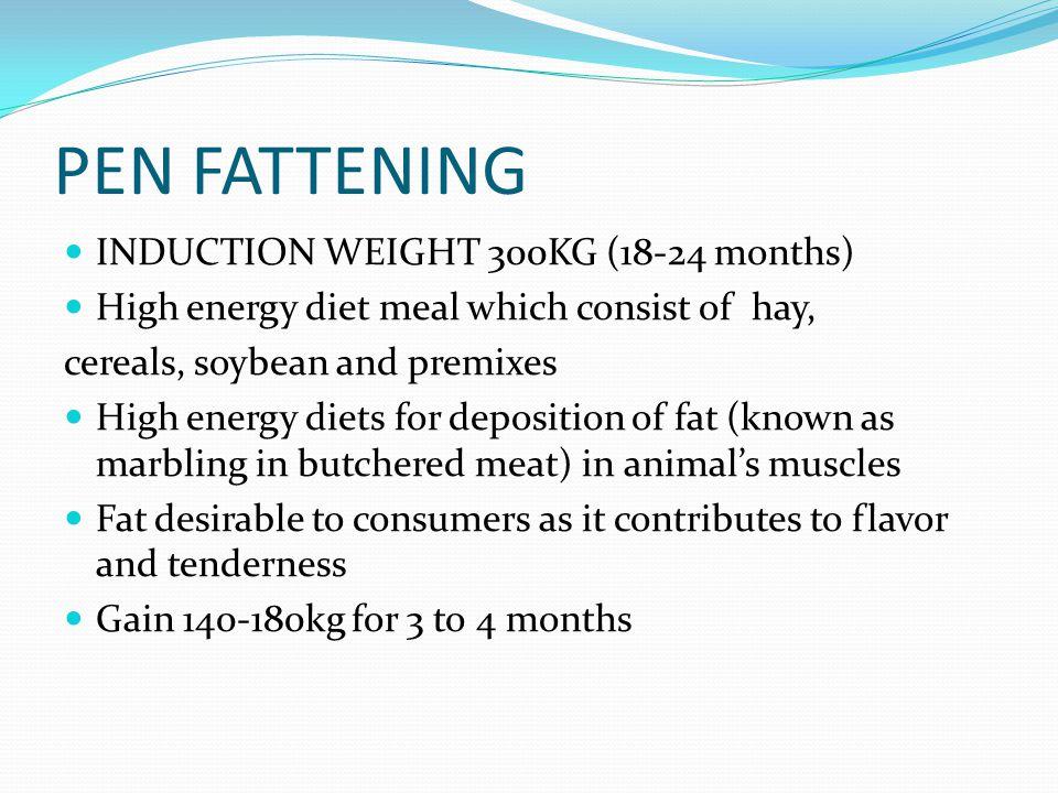 PEN FATTENING INDUCTION WEIGHT 300KG (18-24 months)