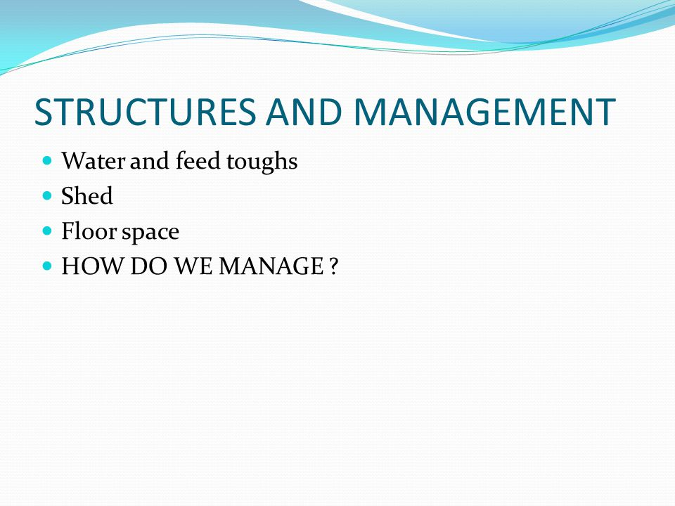 STRUCTURES AND MANAGEMENT