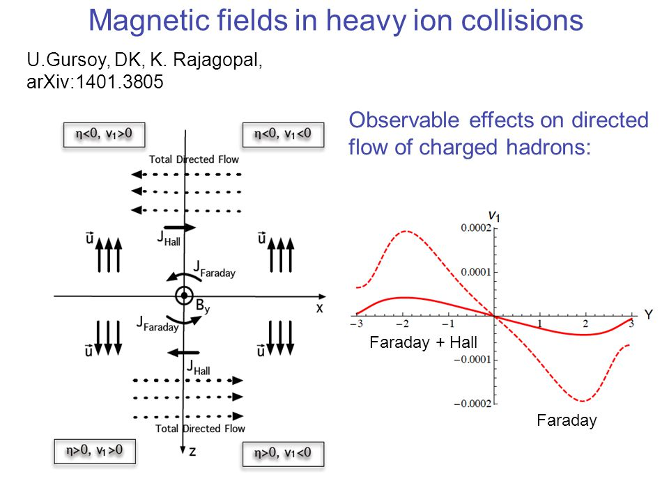 Magnetic fields in heavy ion collisions