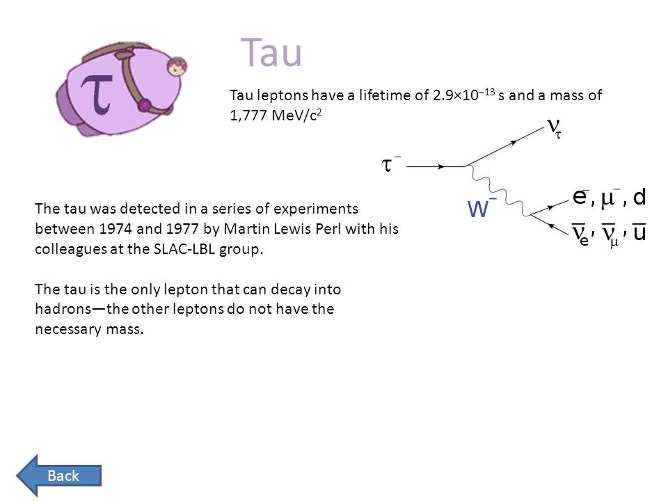 Tau Tau leptons have a lifetime of 2.9×10−13 s and a mass of 1,777 MeV/c2.