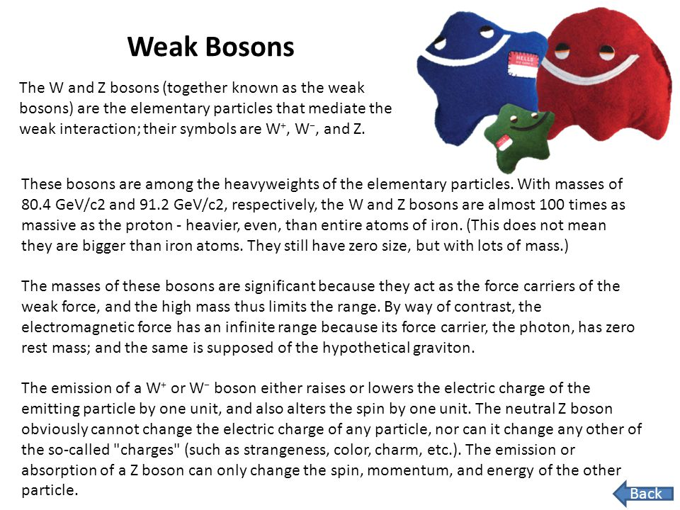 Weak Bosons
