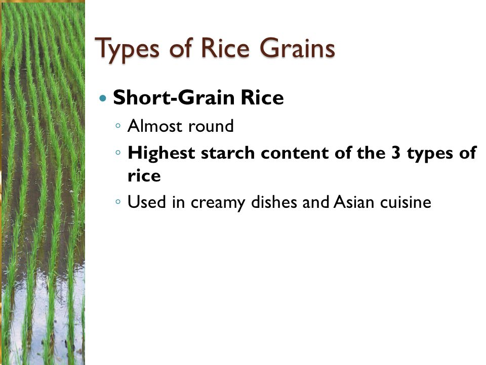 Types of Rice Grains Short-Grain Rice Almost round