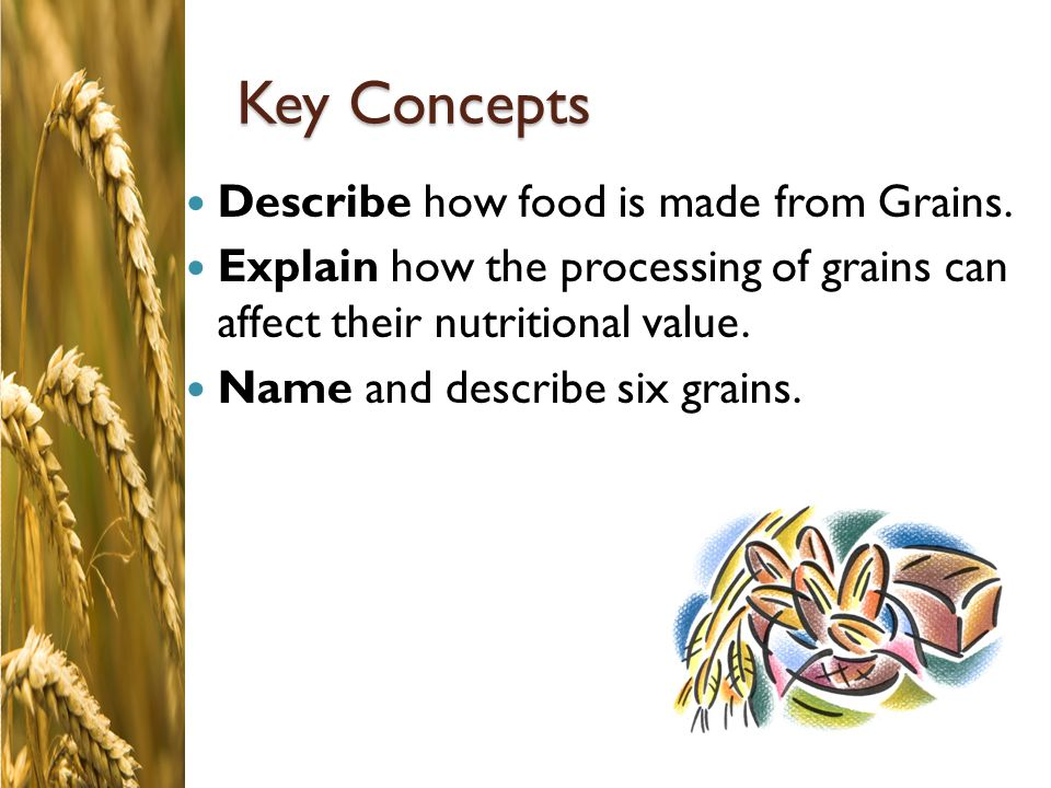 Key Concepts Describe how food is made from Grains.