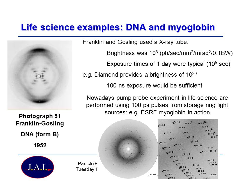 Life science examples: DNA and myoglobin