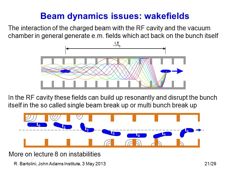 Beam dynamics issues: wakefields