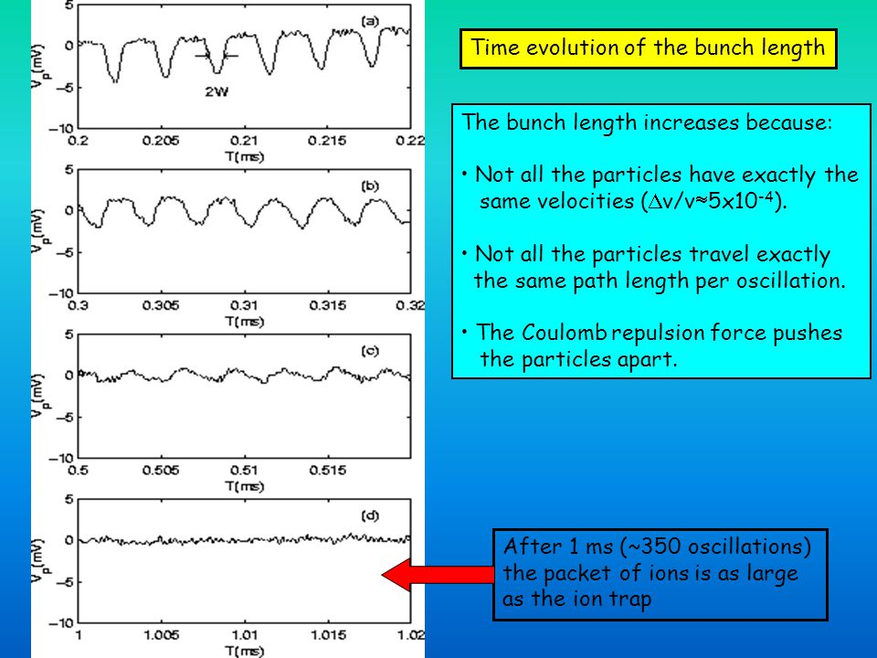 Time evolution of the bunch length