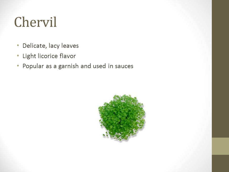 Chervil Delicate, lacy leaves Light licorice flavor