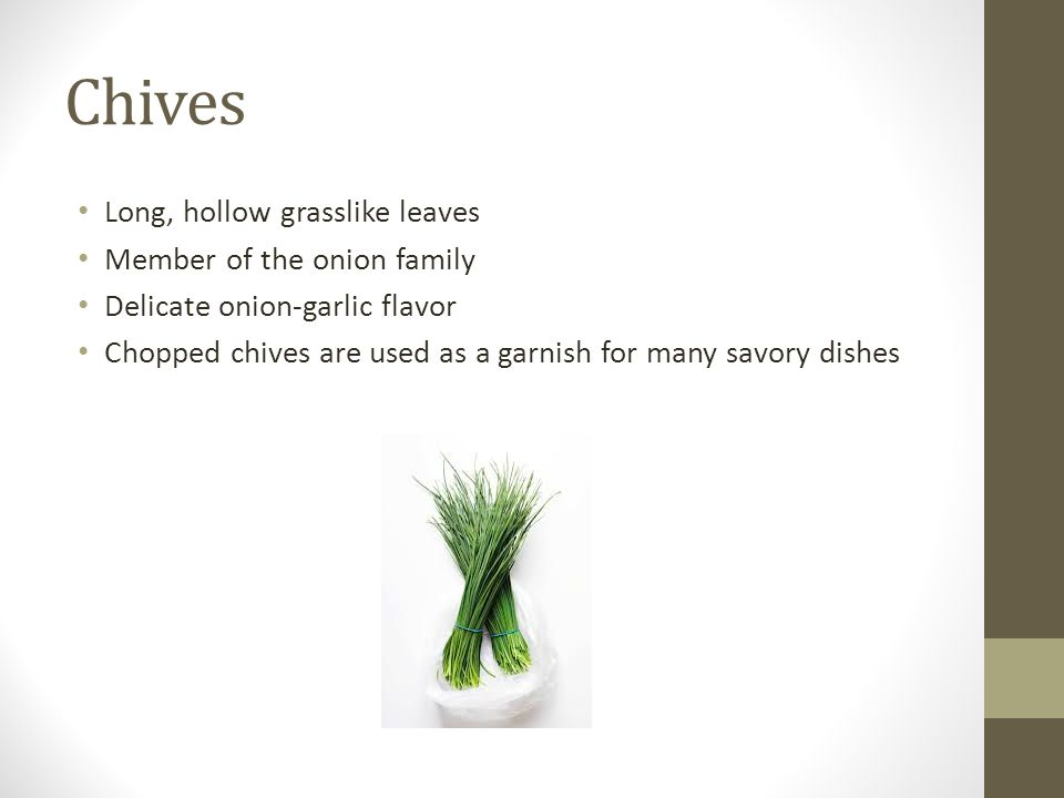 Chives Long, hollow grasslike leaves Member of the onion family