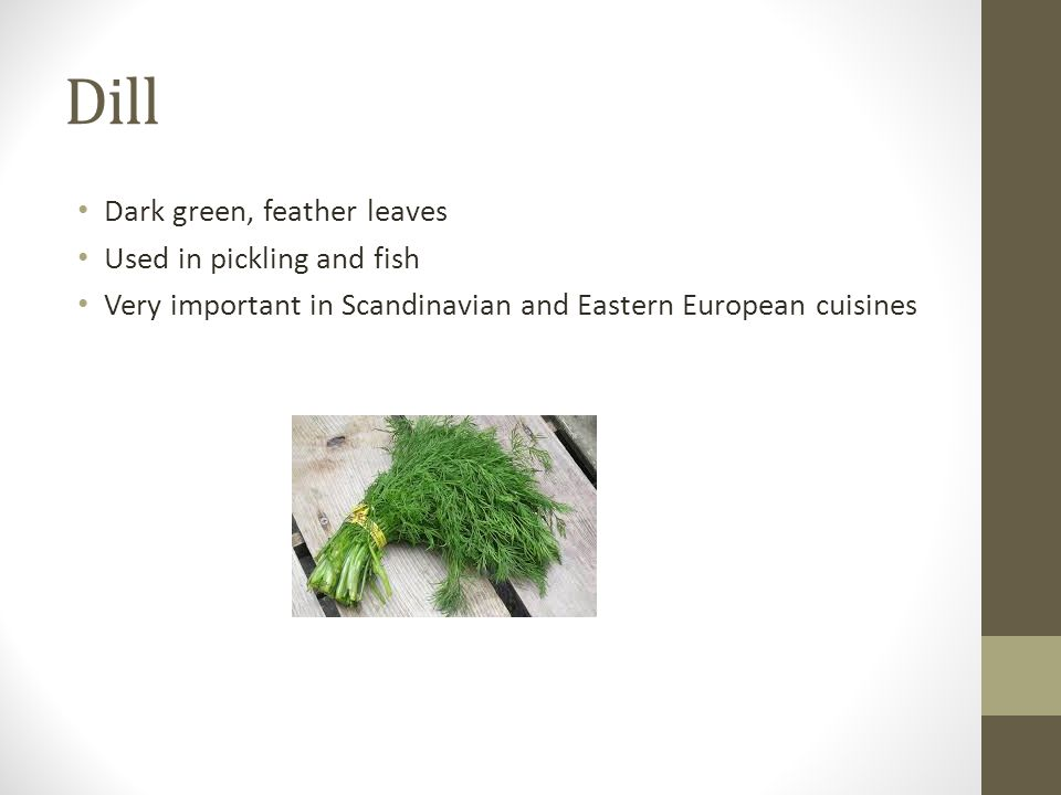 Dill Dark green, feather leaves Used in pickling and fish