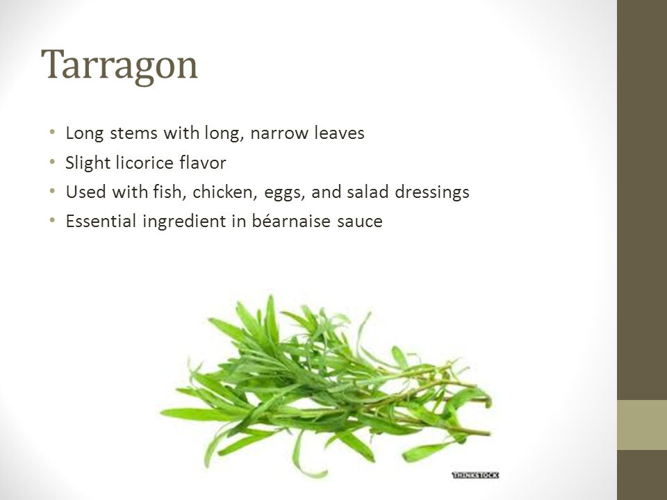 Tarragon Long stems with long, narrow leaves Slight licorice flavor