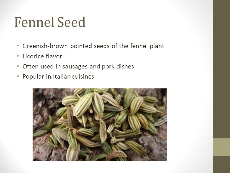 Fennel Seed Greenish-brown pointed seeds of the fennel plant