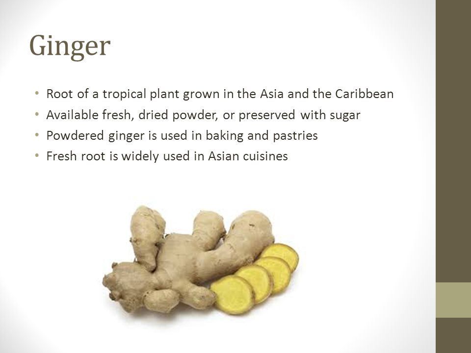 Ginger Root of a tropical plant grown in the Asia and the Caribbean