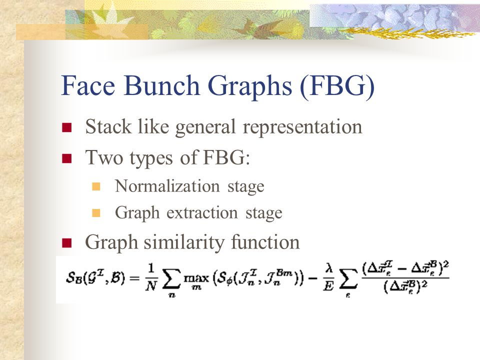 Face Bunch Graphs (FBG)